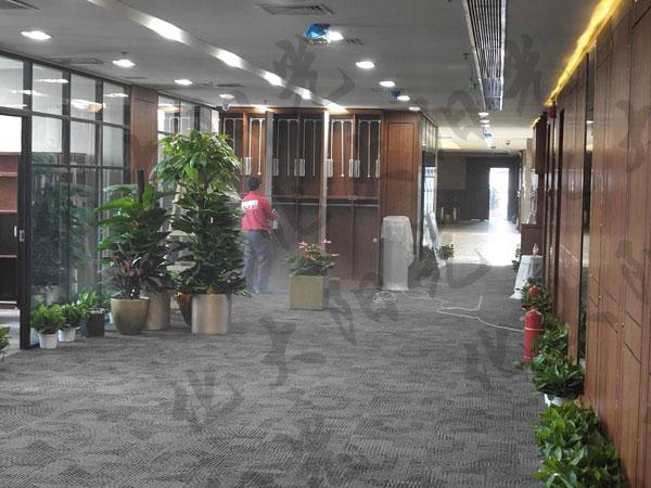 河北廊坊除甲醛企业,廊坊办公室除甲醛,廊坊室内装修甲醛检测,廊坊专业甲醛治理机构